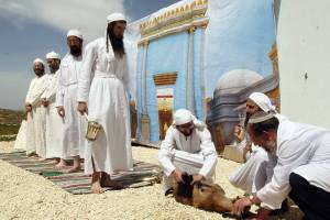Priests of the Temple Institute Training for the Passover